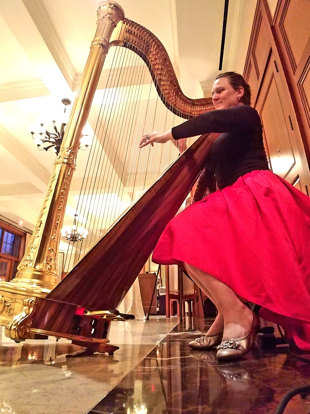 The Michigan Harpist Weddings and Events (26).jpg