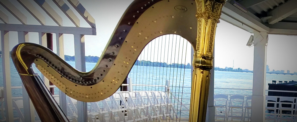The Michigan Harpist Weddings and Events (31).jpg
