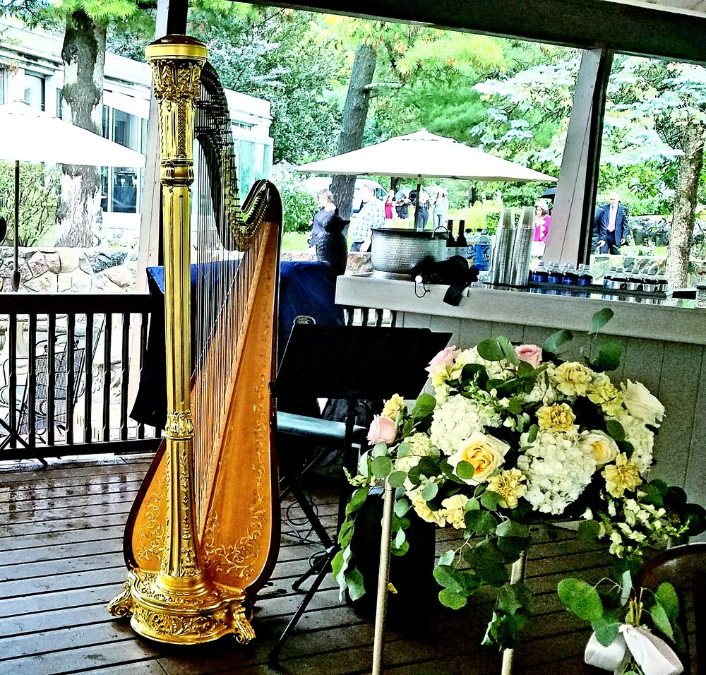 The Michigan Harpist Weddings and Events (50).jpg