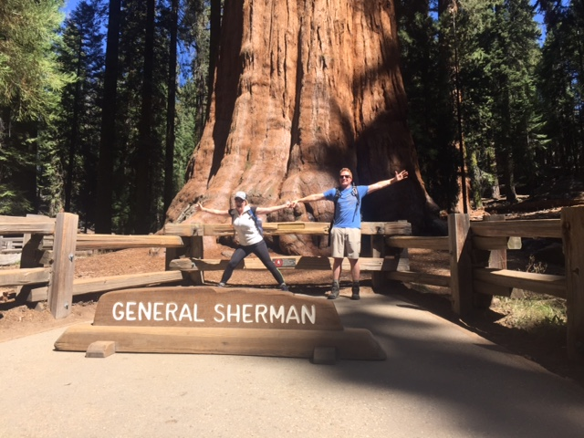 General Sherman the largest tree in the world.