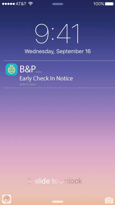 Lock Screen with alert