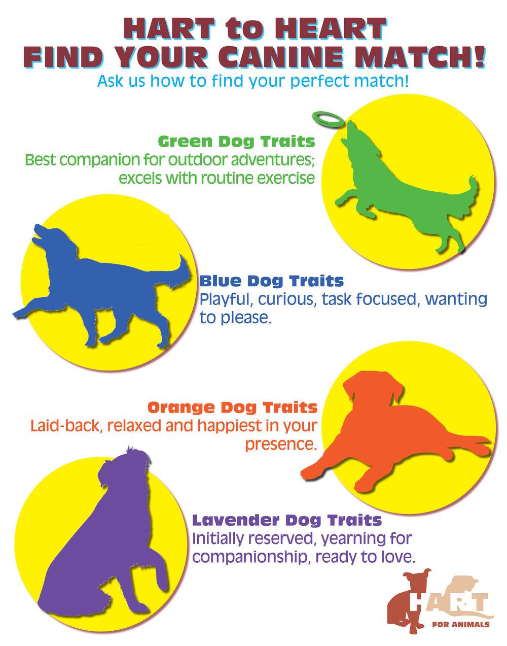 Dog Poster.jpg
