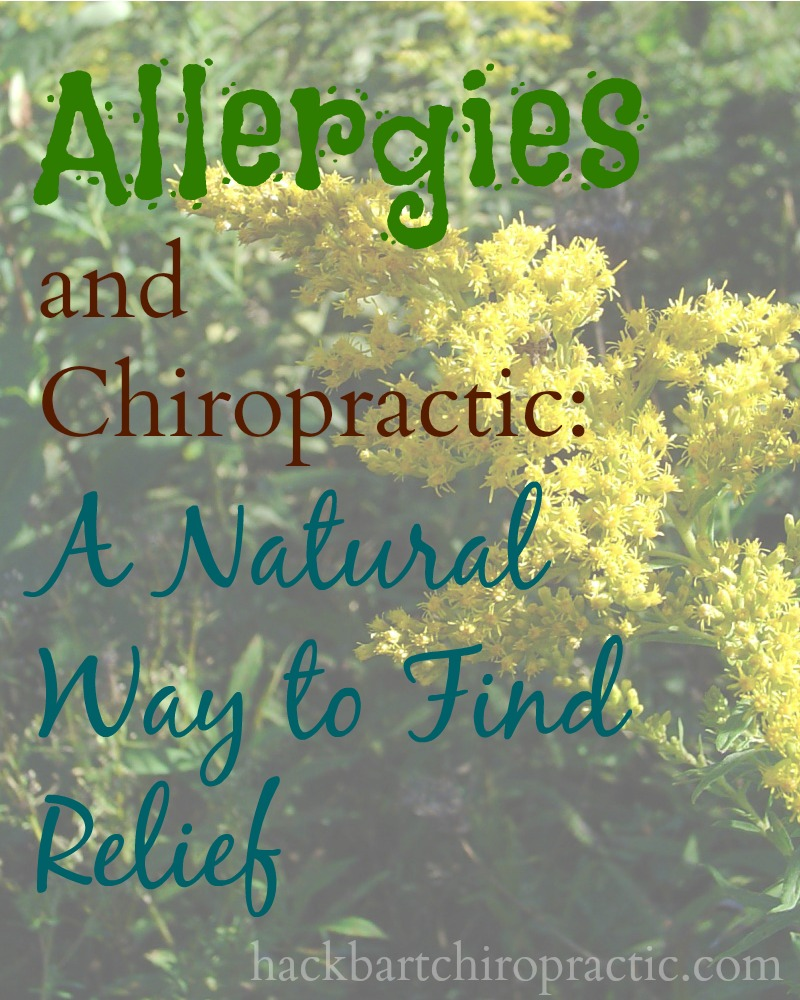 allergies and chiropractic a natural way to find relief