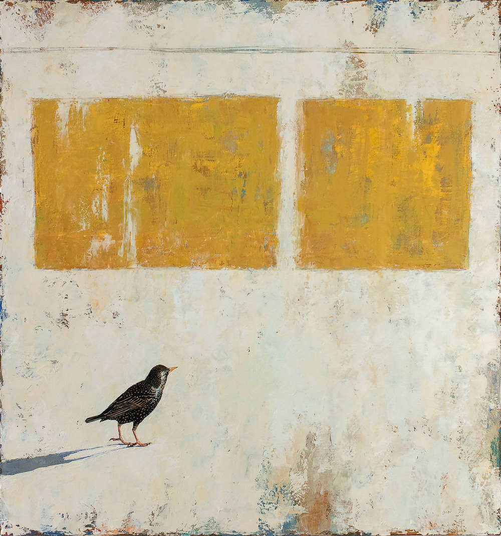 European Starling  2009 oil on canvas 36 x 34 inches  Private collection
