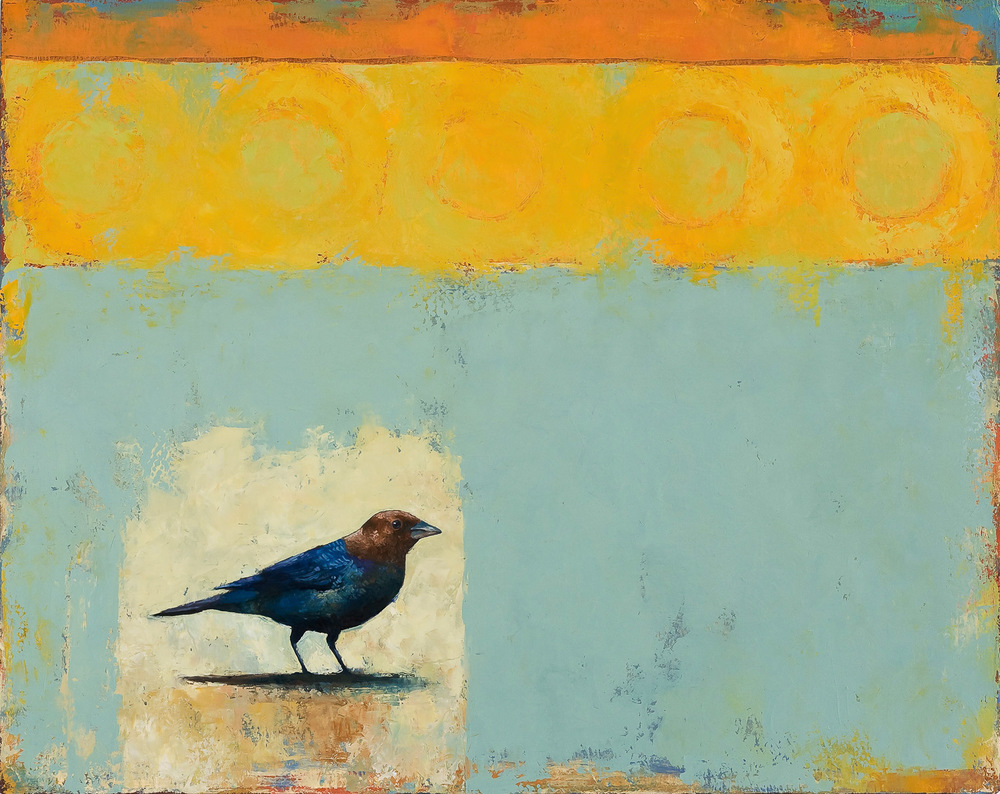 "Brown Headed Cowbird  2008 oil on canvas 24"" x 30""  Private collection"