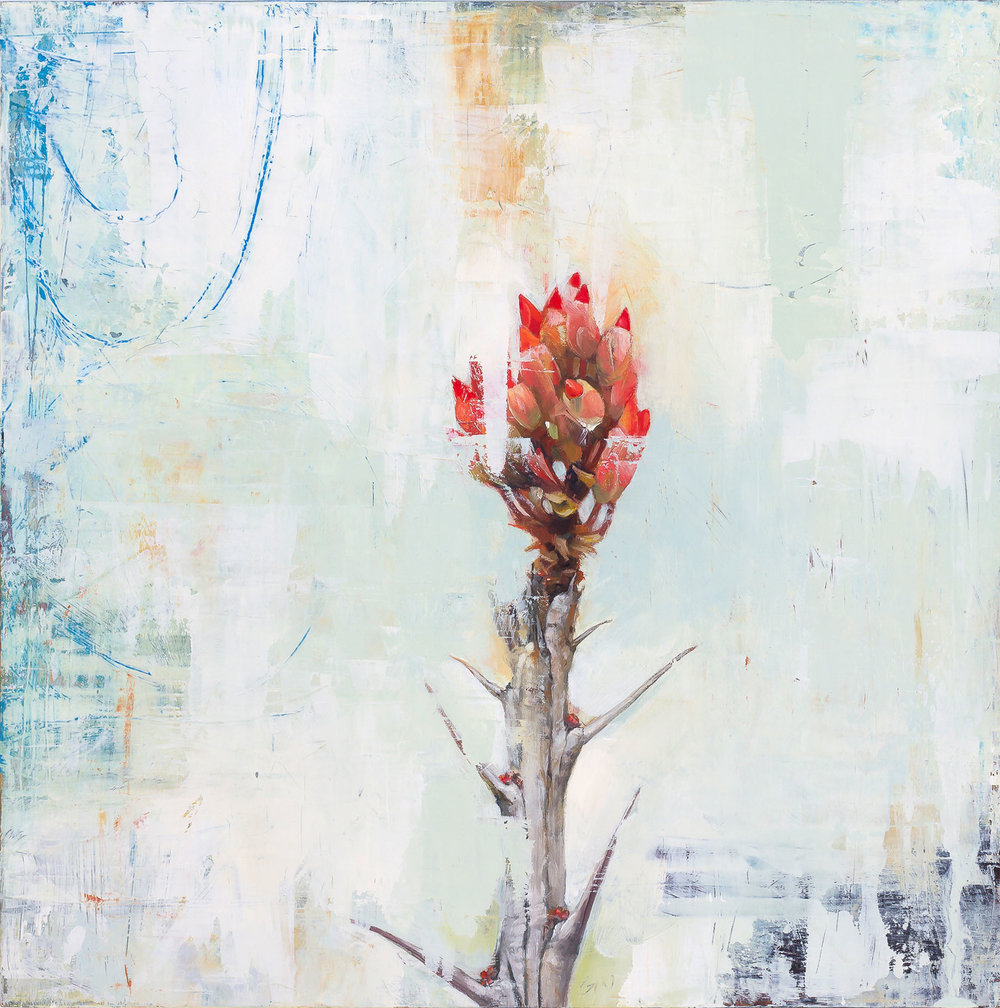 Ocotillo Bloom  2018 oil on panel 10 x 10 inches   Sold