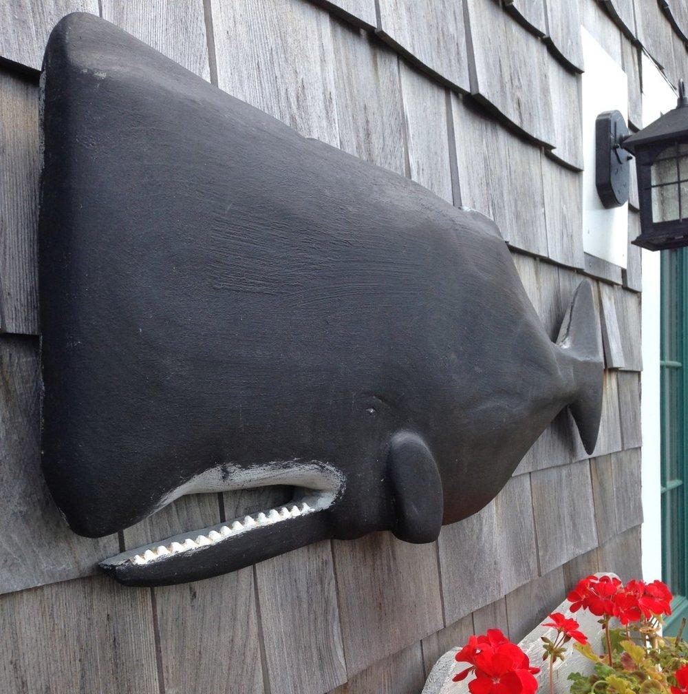 Whale #1.JPG