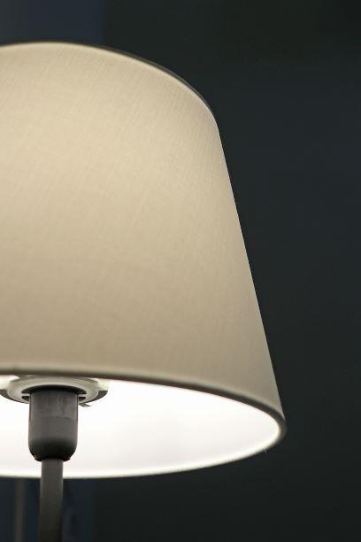 Jan 19 - Lamp Shade 1.jpg