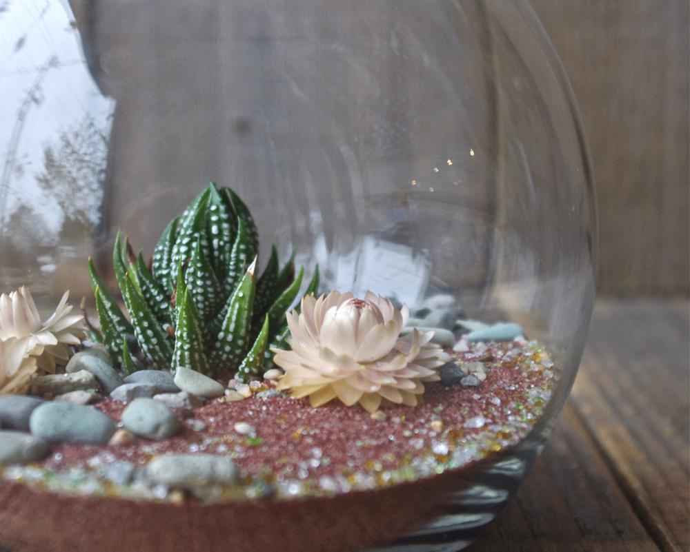 India garnet sand terrarium