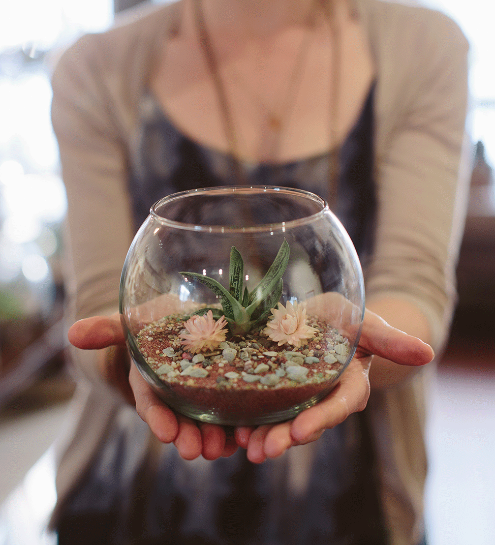TERRARIUMS   Making a terrarium involves taking elements of nature and arranging them in a way that is exquisite. We host your experience while our terrarium booklet works to guide you through the creative process. All you need is included: a glass container, sand, rocks, moss, plants, and unique natural treasures to personalize and create your own terrarium. If you care to upgrade, we have plenty of specialty glass available.