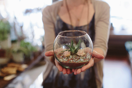 6 . You'll have your very own terrarium to take home.