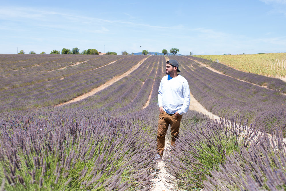 Provence2017-1.jpg