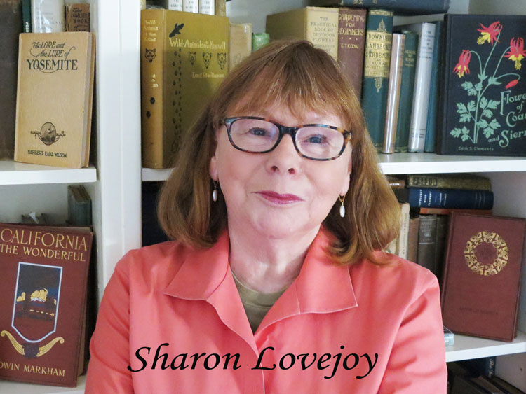 Sharon-Lovejoy_headshot_1a.jpg