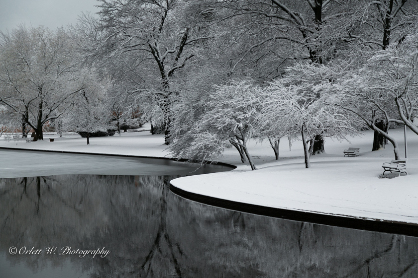 A Blanket of Snow - Metallic Print (only)
