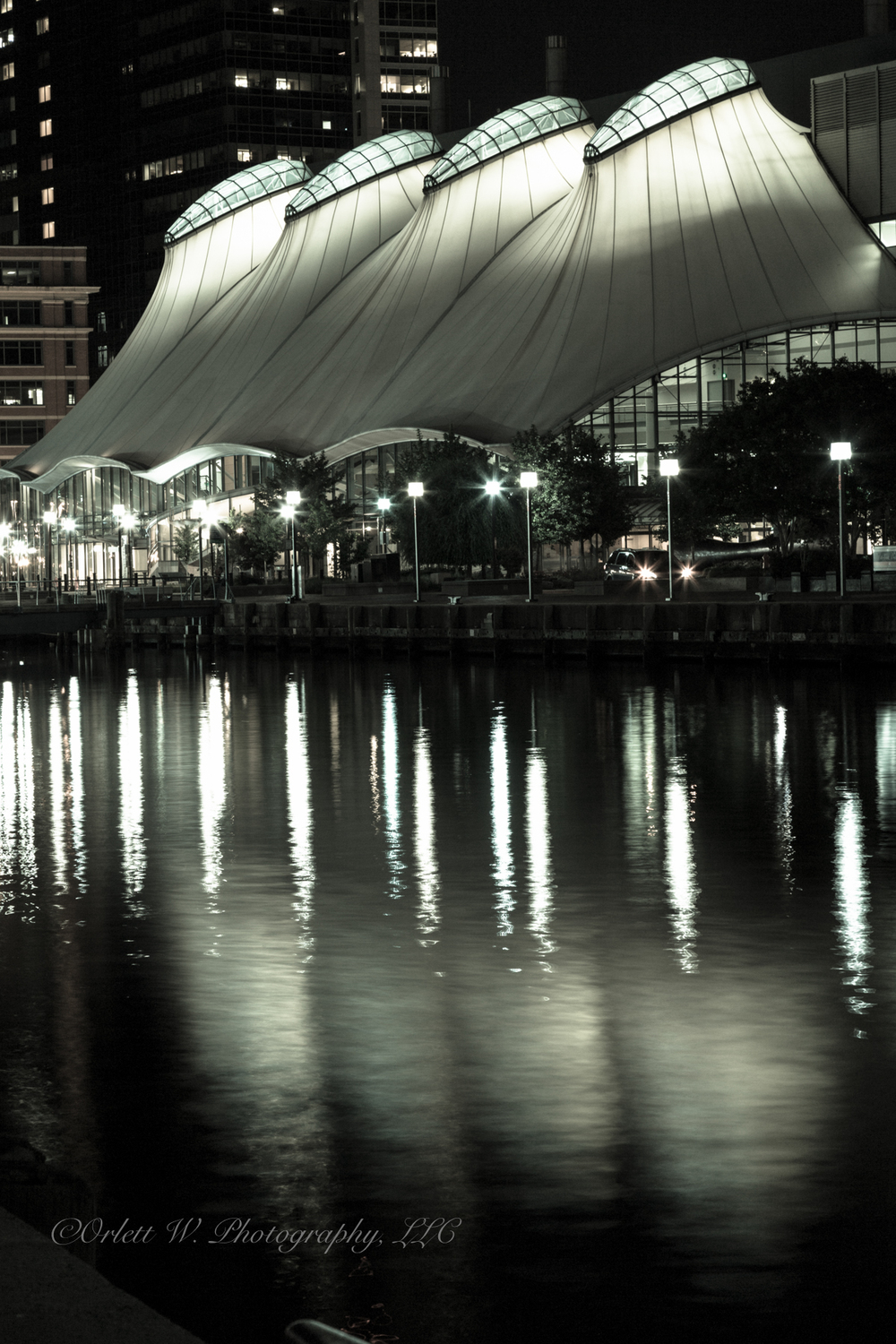 Sails on the Harbor