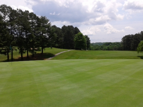 WC 5 green June 2015.jpg
