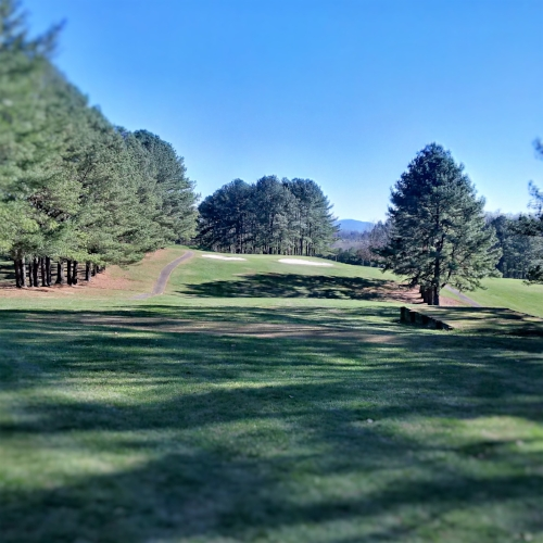 Hole #6, par 3- A lengthy tee shot from the White and Blue tees, (175-185 yards). Ladies and Senior tees closer to 150 yards. Guarded on the right by a row of pines, and by 2 sand traps in front of green.