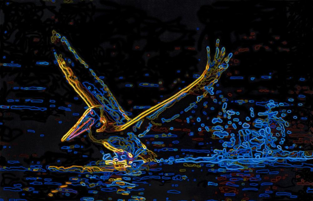 Pelican Landing.