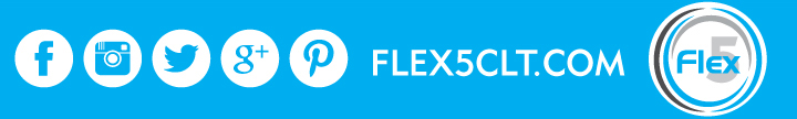 Flex5_sm_layer1.jpg
