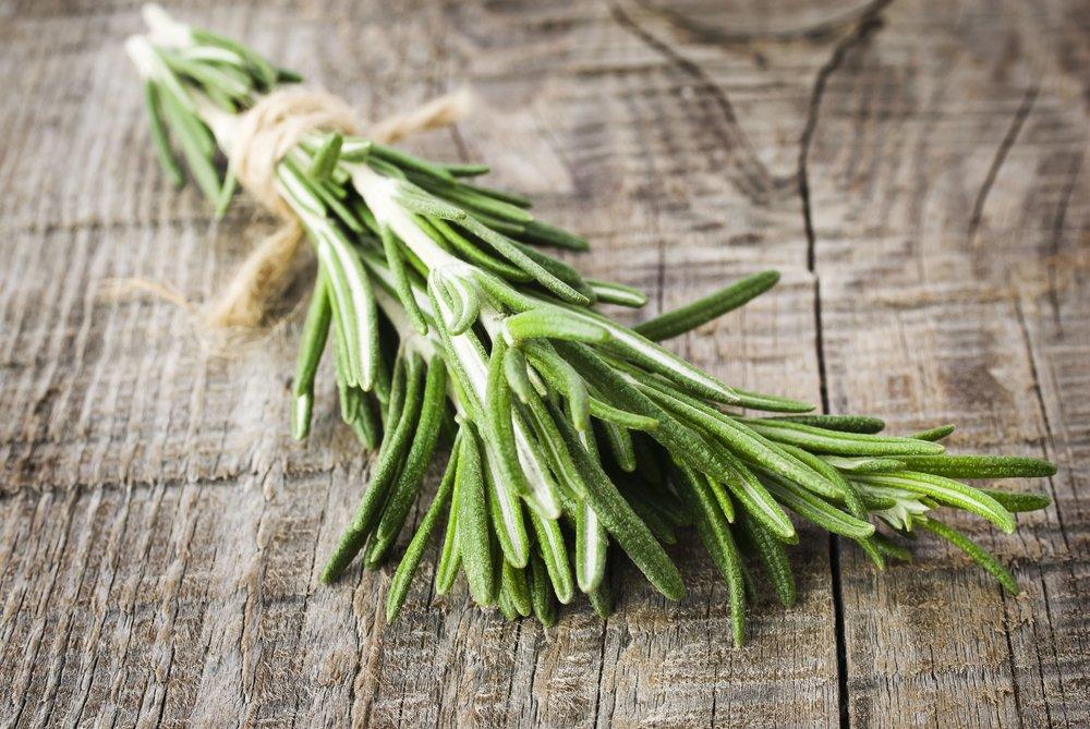 Flex5-Aromatherapy-Rosemary-Essential-Oil-Rosmarinus-Officinalis-CT1,8-Cineol-Uptown-Charlotte-NC.jpg