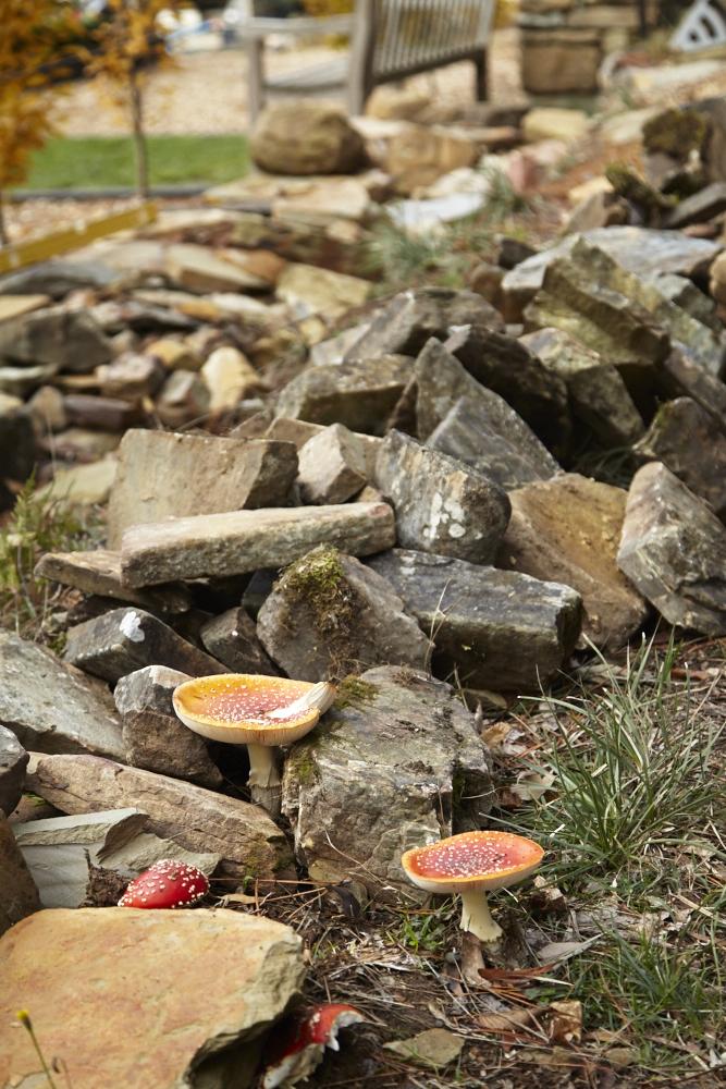 Oak & Monkey puzzle Drystone Walling Workshop_0014.jpg