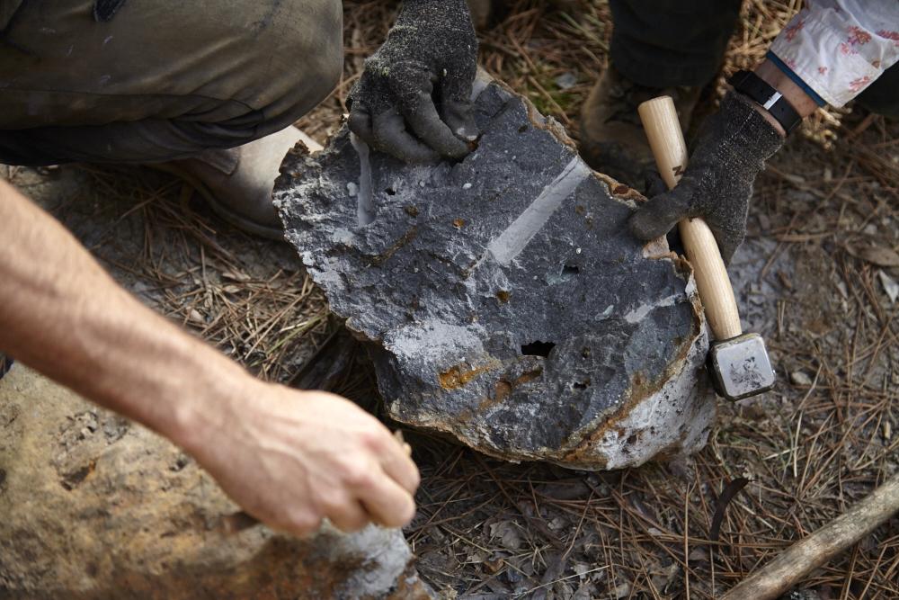 Oak & Monkey puzzle Drystone Walling Workshop_0093.jpg
