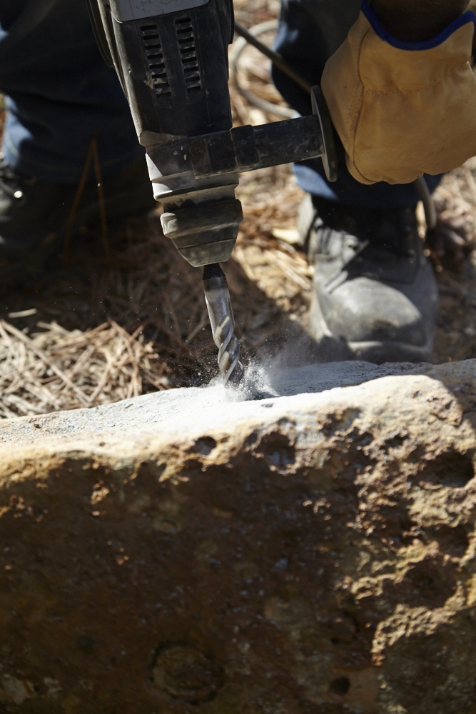 Oak & Monkey puzzle Drystone Walling Workshop_0112.jpg