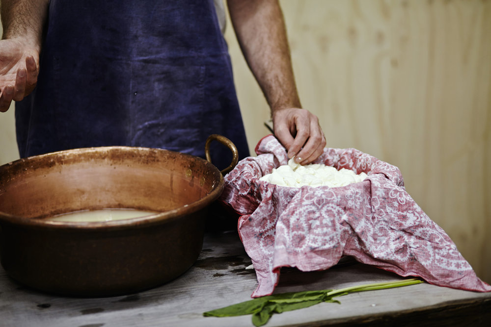David Asher natural cheese making_IMG_0287.jpg