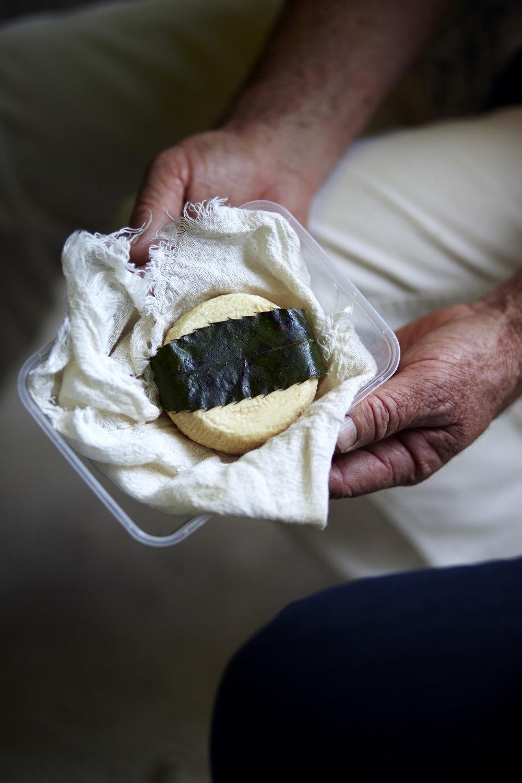 David Asher natural cheese making_IMG_0530.jpg
