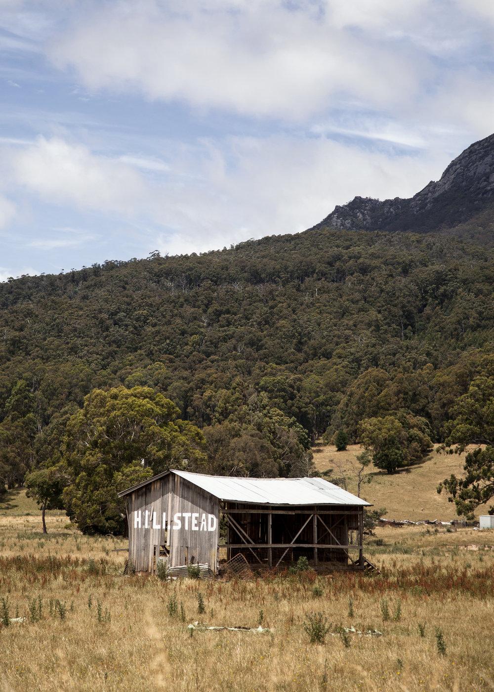 danny-Wootton-photographer-Tasmania-Cradle-Mountain_6jpg