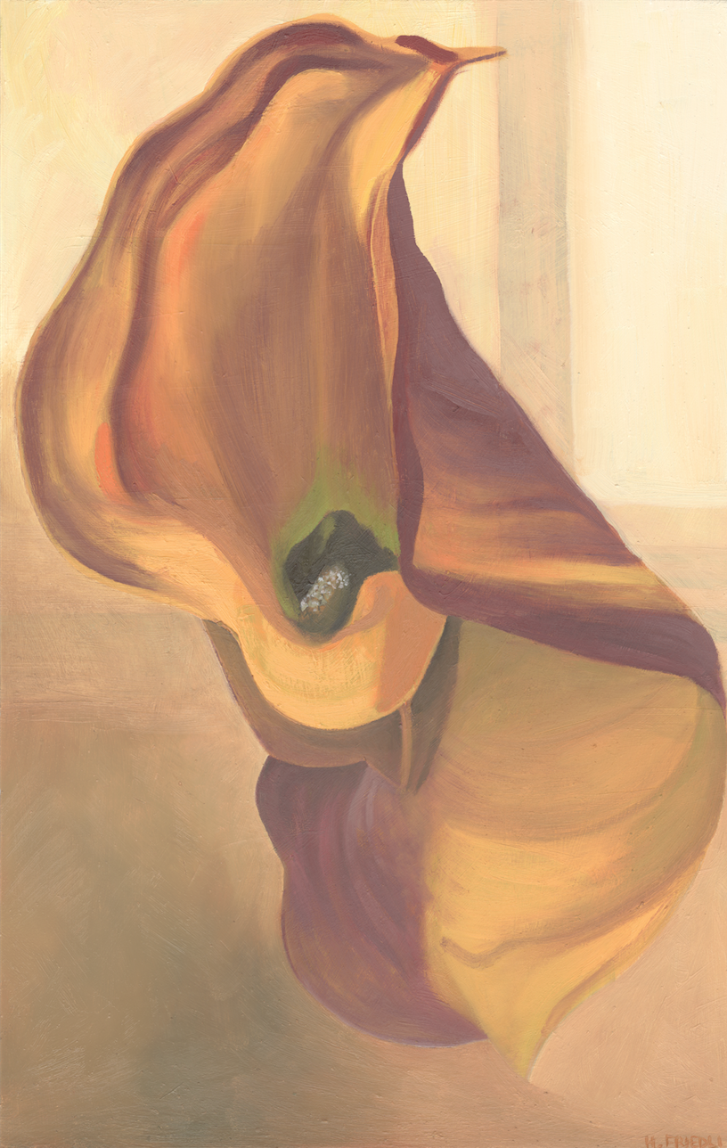 """Orange Calla Lily   Oil on Masonite  11"""" x 17""""    Purchase print       Calla Lilies are beautiful, sensuous flowers which play a historically significant role in many paintings created by artists such as Diego Rivera and Georgia O'Keeffe...  Read more ..."""