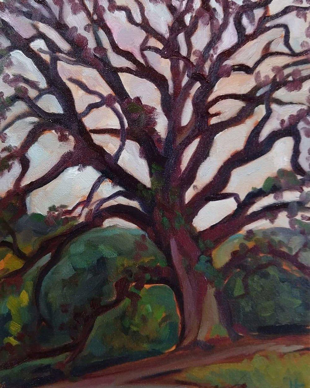 """""""Bejeweled White Oak"""""""