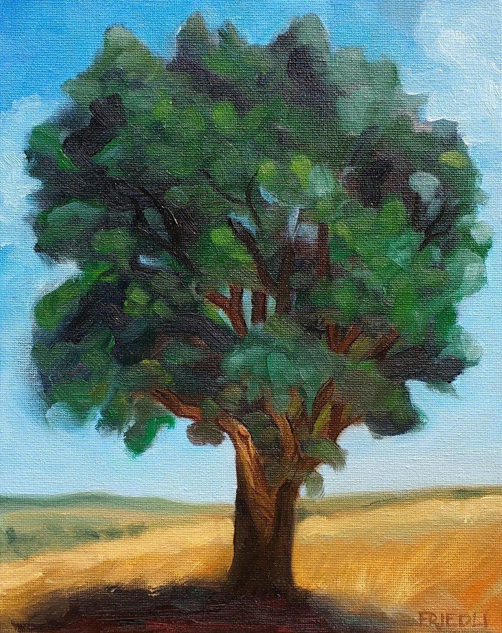 """White Oak in Savannah"""