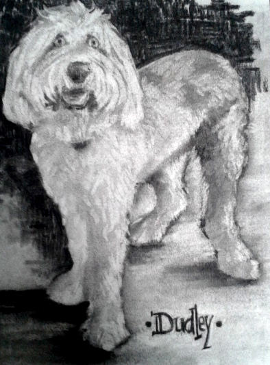 DUDLEY CHARCOAL.jpg