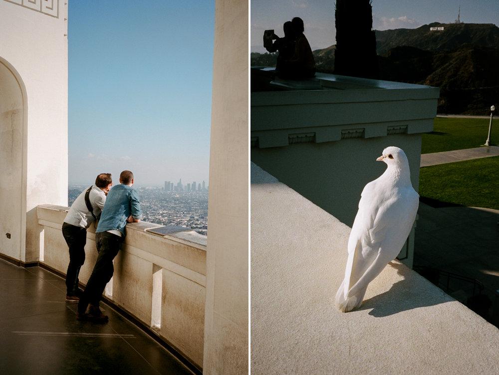 Nikon35ti-Example-Images-LA-Portra-400-012.JPG