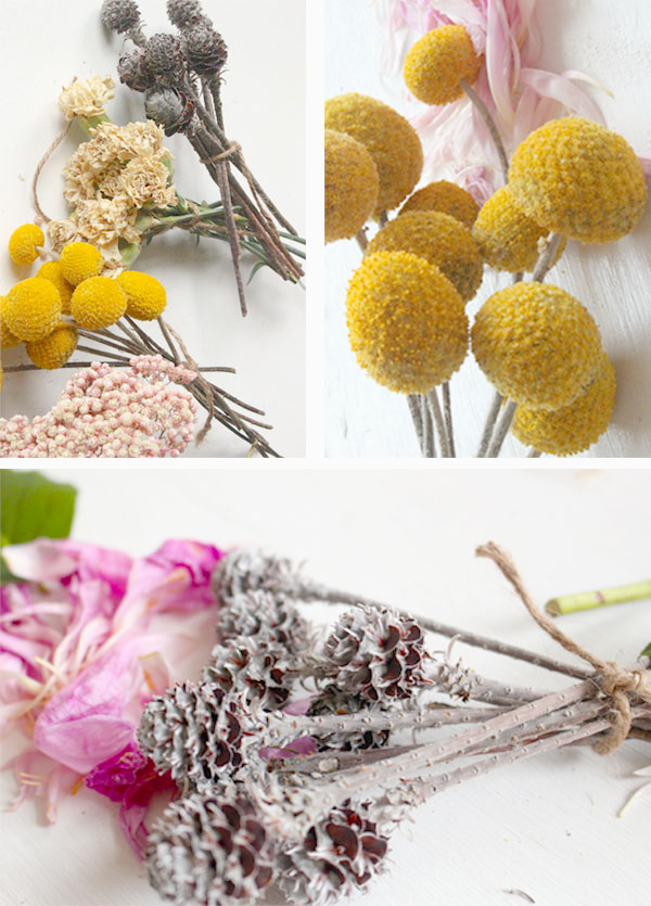 dried-flowers2.jpg