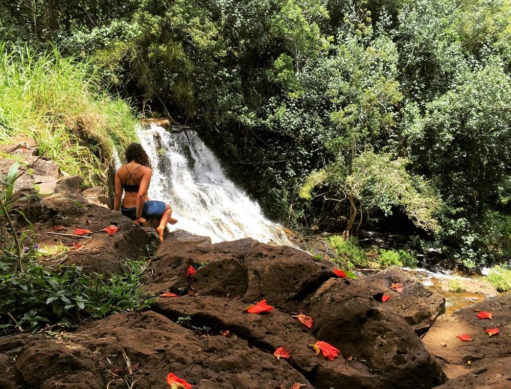 Ho'opi Falls, Hawaii, April 2016