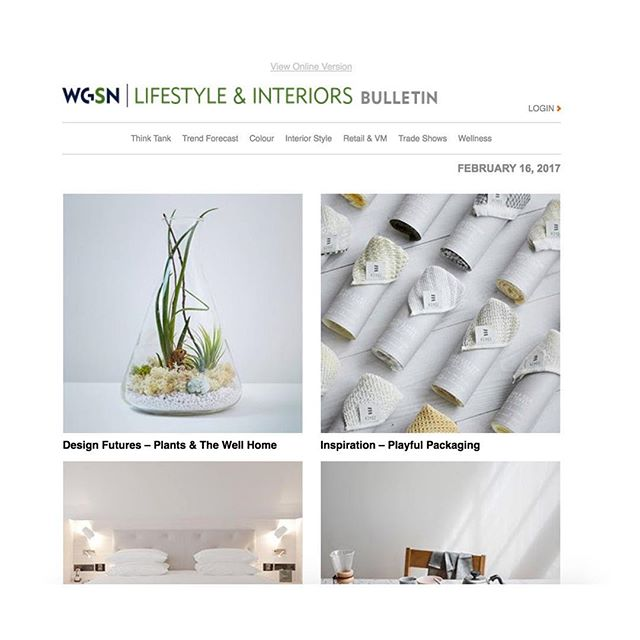 🌿⚗️🌿 @wgsn Plants & The Well Home