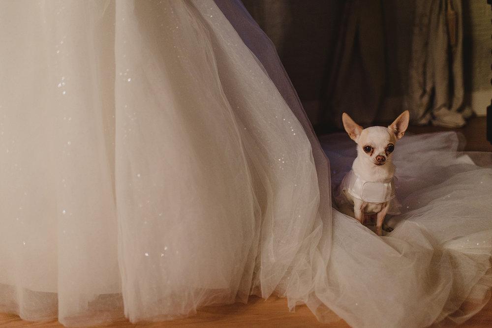 wedding-trouwen-nijmegen-fotograaf-zakelijk-amsterdam-0092.jpg