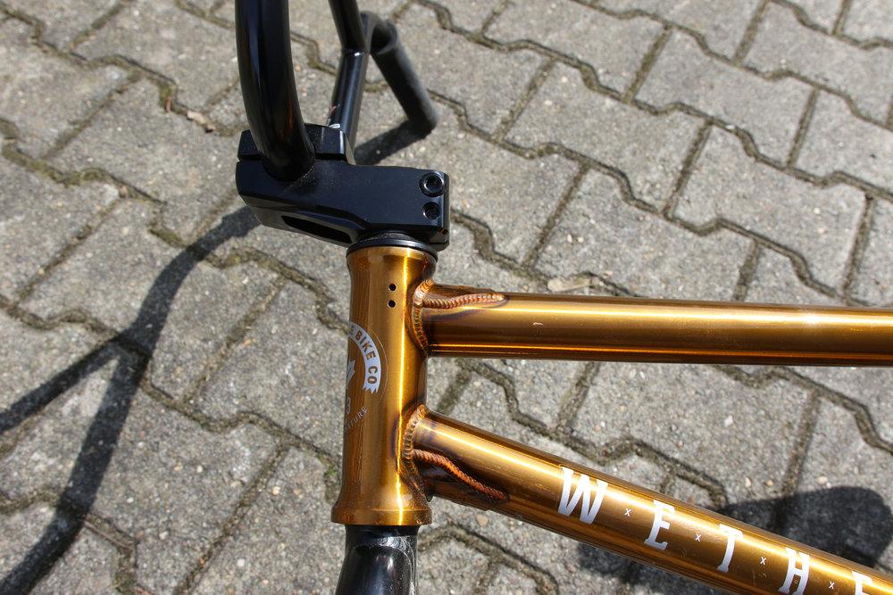 JK6A5155.jpg