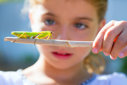Girl looking at insect.jpg