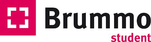 brummo-student-camerabewaking-transelec.png