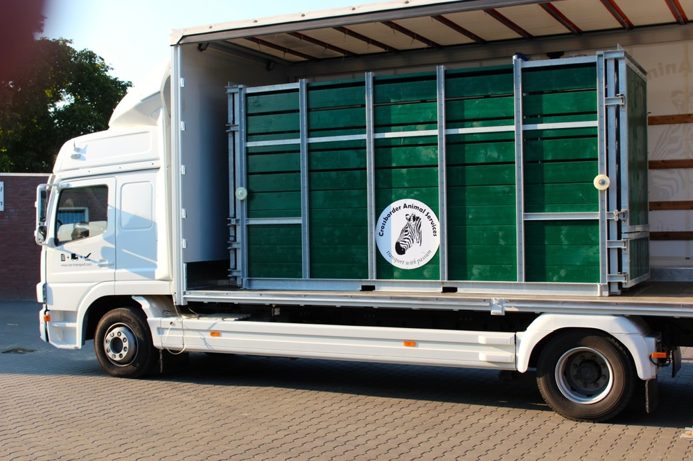 Crossborder Animal Services. Crates for transportation 2.jpg