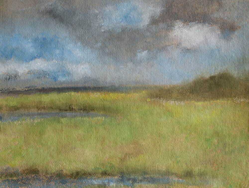 "Fire Island Marshlands, 15 x 11"" pastel over oil on paper, 2017"