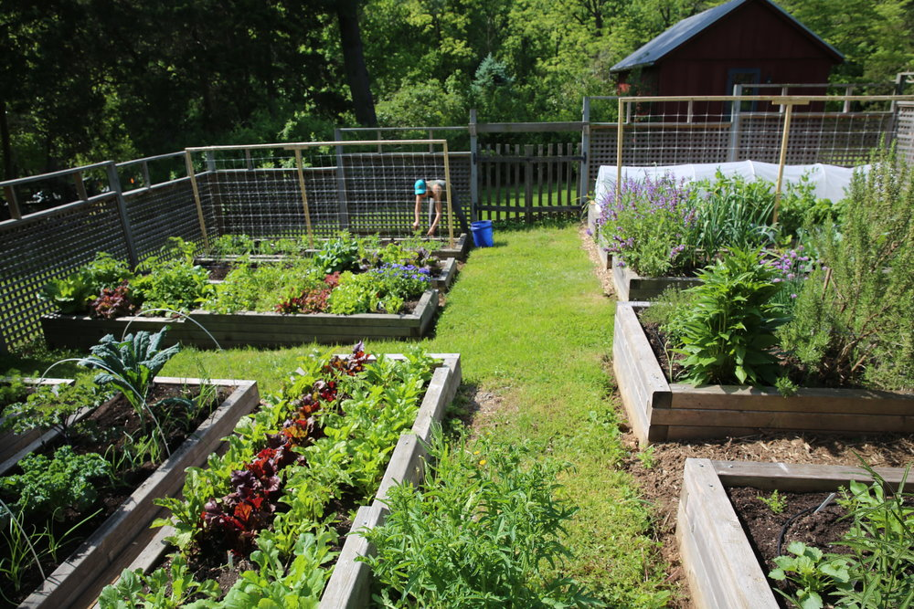 Raised Bed Garden - McLean, VA