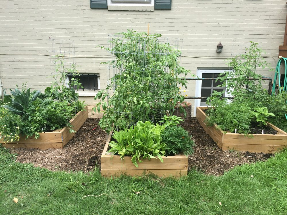Raised Beds, Mulching
