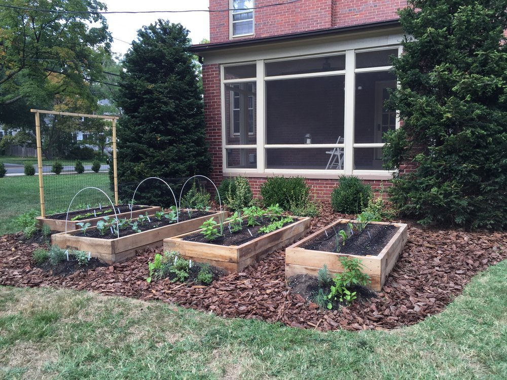 Raised Bed Garden, Trellis, Mulching