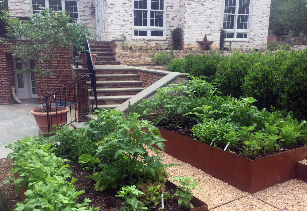 Raised Beds_Webb_1.jpg