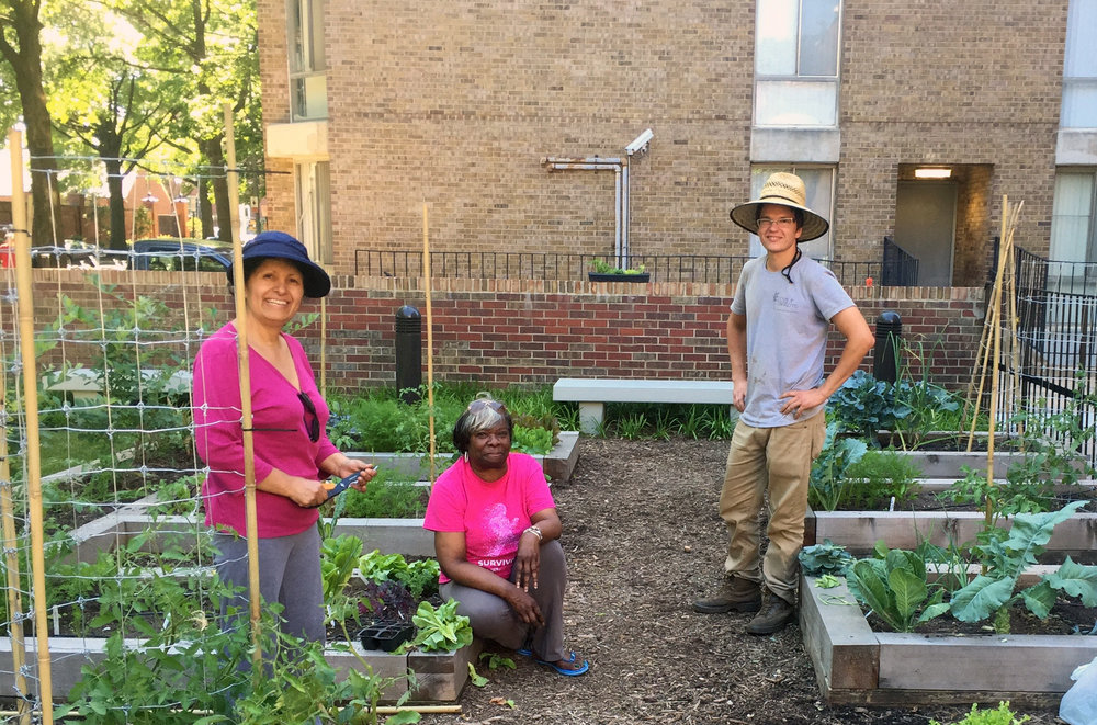 Community Gardens_Channel Square_1.jpg