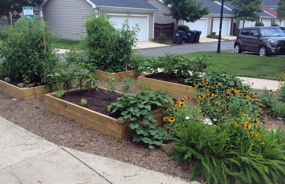 Raised Beds_Fort Belvoir_2.jpg